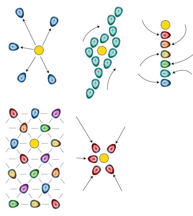 Robot Swarm Behavior Graphics